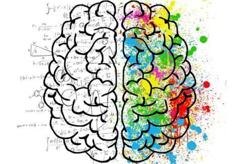 10 Prospek Kerja Psikologi Paling Diminati Dan Populer 2