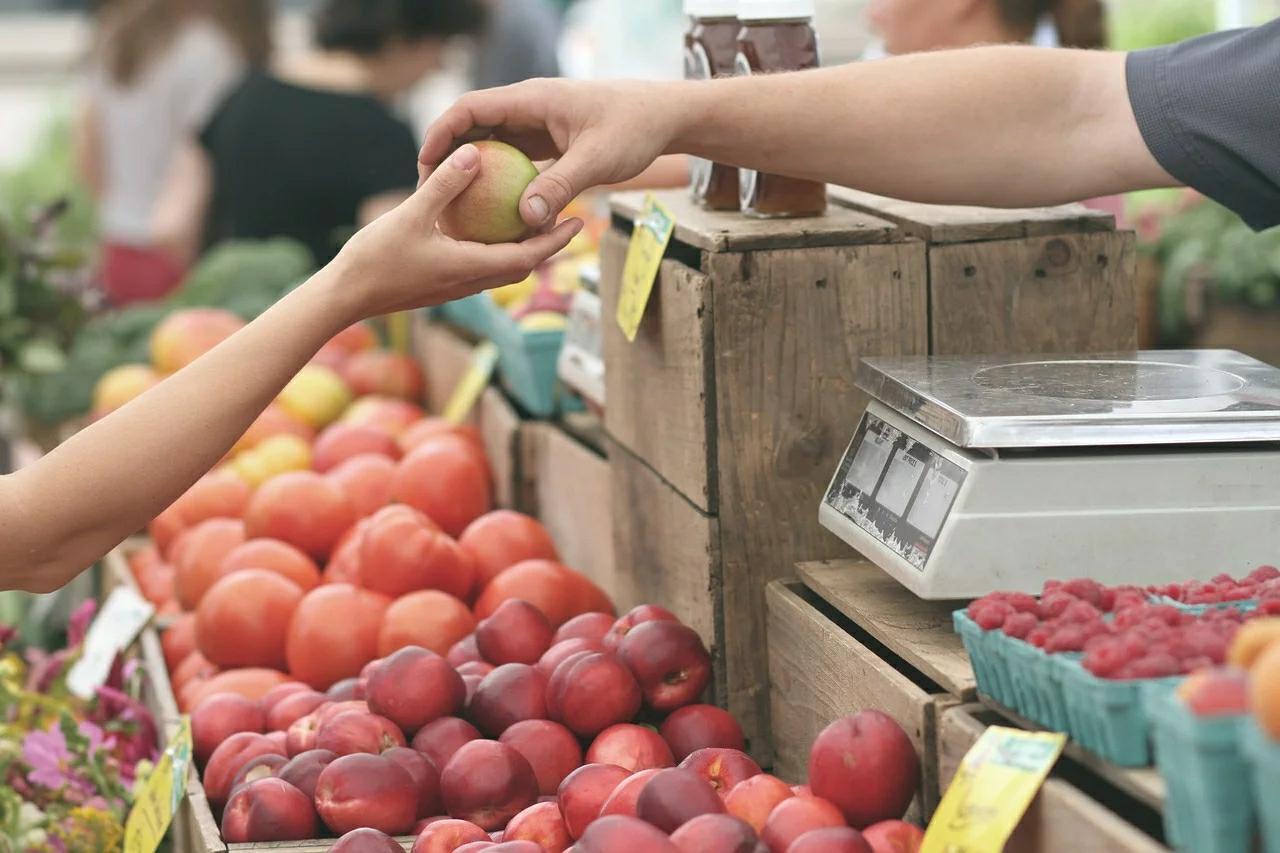 10 Prospek Kerja Agroteknologi Bertani Dengan Teknologi 1